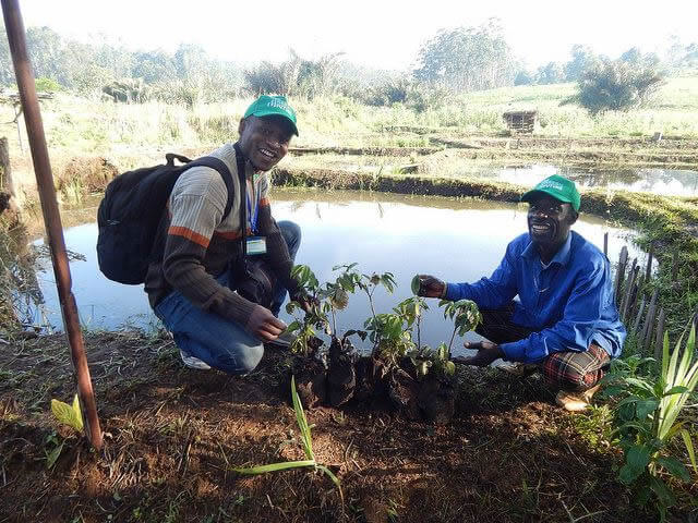 Trees For The Future in Cameroon